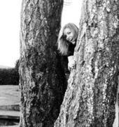 small-tree.jpg