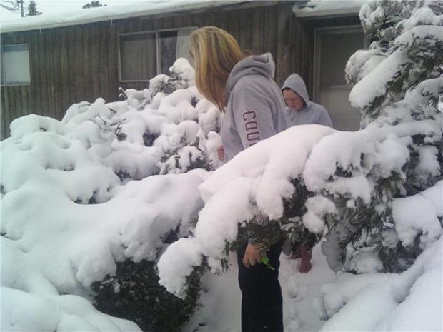 snow-no1